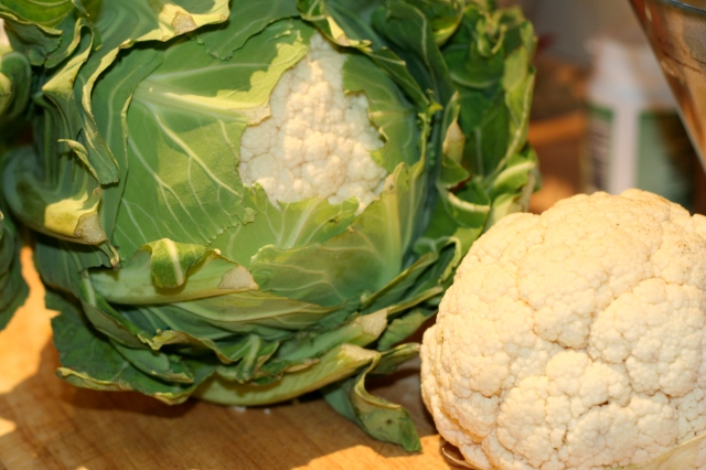 Ahhh cauliflower...what to do with you?
