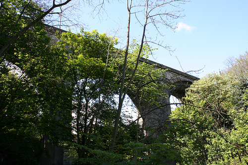 Beneath Dean Bridge - I figured I should include a picture of the actual bridge that I take so many pictures from!