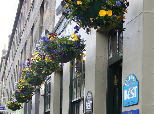 Colorful hanging baskets outside the pub.