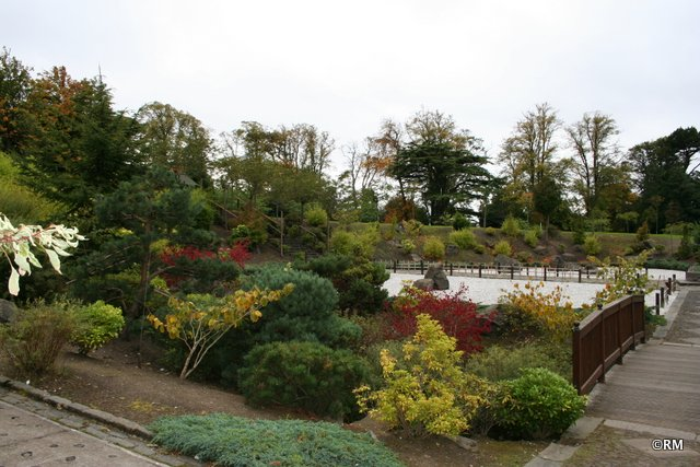 Japanese Gardens - apparently the largest in the UK.