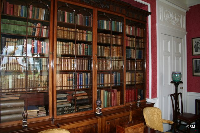Book cases in one of the living areas.